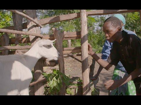Kids for Kids - Compassion International