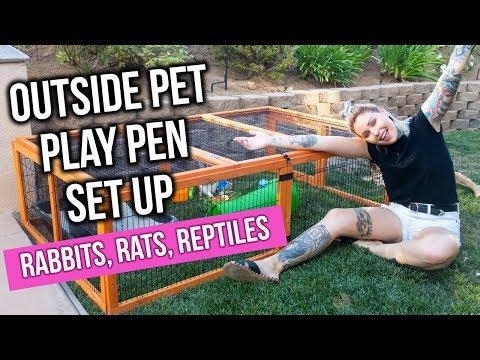 DIY OUTSIDE PET PLAY PEN For Rabbits, Rats & Reptiles   KristenLeannimal