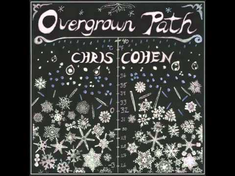 Chris Cohen - Don't Look Today