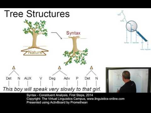 Constituent Analysis ☆ Linguistics Lecture