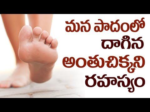 మన పాదంలో దాగిన అంతుచిక్కని రహస్యం || Amazing Health Benefits of Walking Barefoot || SumanTV