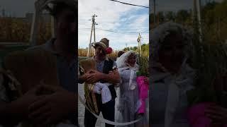 Традиции гагаузской свадьбы