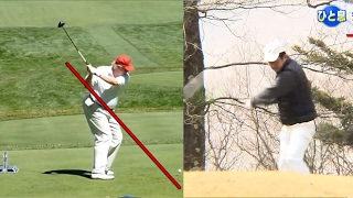 David Leadbetter Analyzes Golf Swings of Donald Trump and Japanese Prime Minister Shinzo Abe