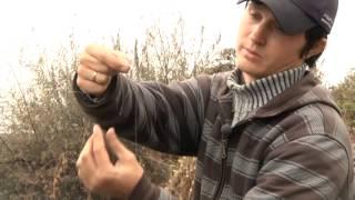 Фидерная рыбалка на Дону(Фидерная рыбалка на Дону, октябрь., 2014-03-14T17:17:32.000Z)