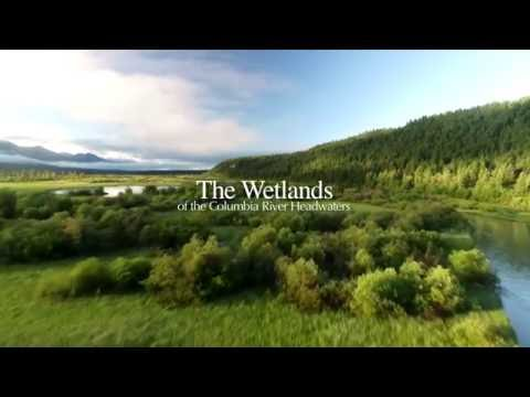 Wetlands of the Headwaters of the Columbia River