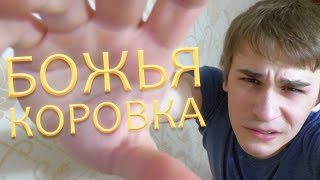 Божья Коровка(Я вк - http://vk.com/oneshko Группа - http://vk.com/juliusspeak., 2014-10-29T19:57:22.000Z)