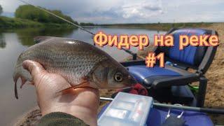 Фидер на реке Спонтанная рыбалка