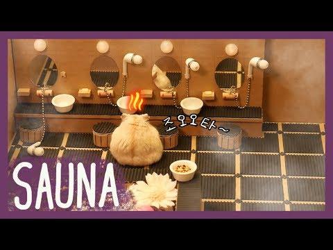 목욕탕에 간 햄스터 (hamster sauna)