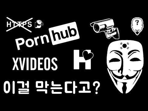 정부가 막아버린 불법 사이트들 TOP10 + 초간단 뚫는법(VPN 아님) #1