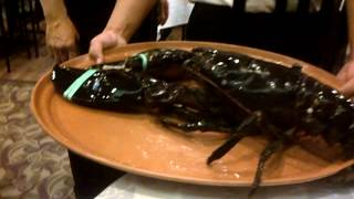 biggest lobster ever