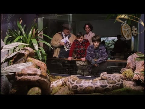 КиноМоменты - Гарри Поттер и Филосовский камень | Просыпайся, кузен, мы идем в зоопарк.