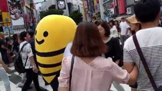 Japan 2016 bits: Day 10 - Momento Assort TOP, Tokyo,Shibuya, Ueno, Takeshita Dori