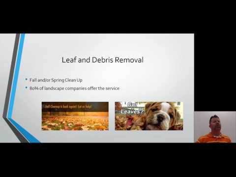 Leaf and Debris Removal