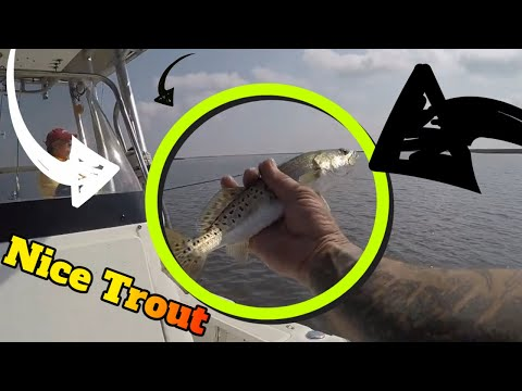 Fishing Louisiana Trout. Speckled Trout Fishing With Popping Cork.