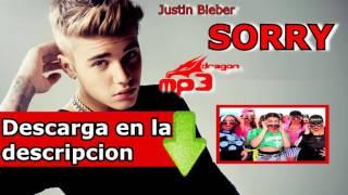 Justin bieber - sorry hq mp3 mega ...