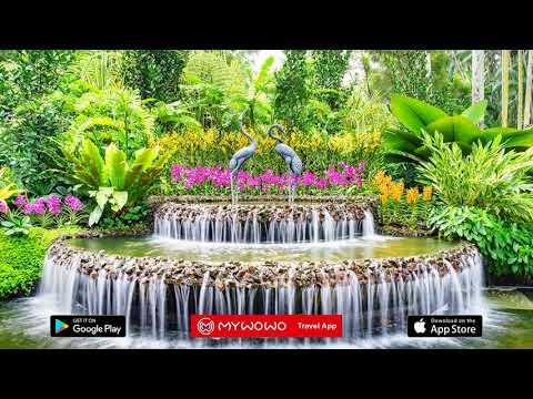 Jardin Botanique – Introduction – Singapour – Audioguide – MyWoWo Travel App