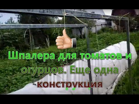 Сад в Подмосковье – проект «Замечательные сады» / ПРОФСАД