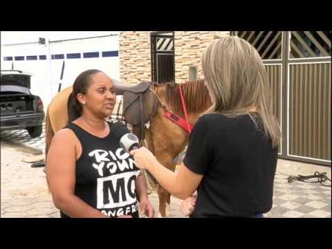 Garotinho Com Doença Grave Reencontra Seu Melhor Amigo, Um Cavalo
