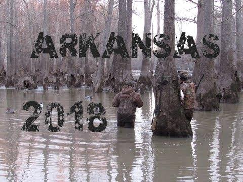 2018 Arkansas - Public Water Duck Hunt