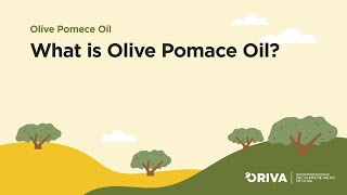What is Olive Pomace Oil?