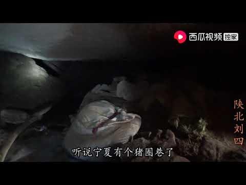 陕北刘四:刘四在农村水龙洞探险,洞里面越走越窄,听说通往宁夏,是真是假