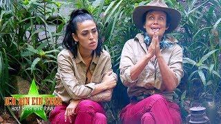 Dschungelcamp 2020   Die Konkurrenz wächst - Was macht den Dschungelkönig aus?