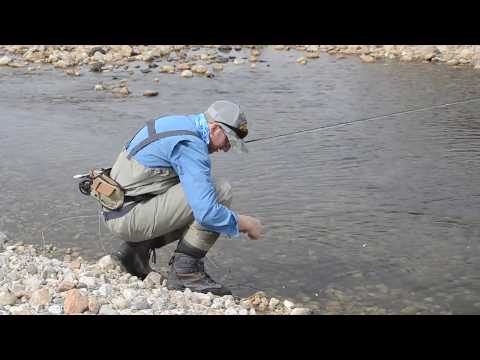 Fly fishing in the Bighorn Mountains