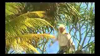 Video Karmapala 06 Ratu siluman buaya download MP3, 3GP, MP4, WEBM, AVI, FLV Agustus 2018