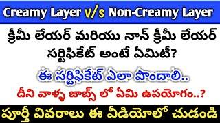 Creamy Layer (vs) Non- Creamy Layer అంటే ఏమిటి? How to Apply Non Creamy Layer Certificate in telugu