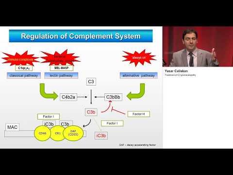 treatment of C3 glomerulopathy eraedta2018