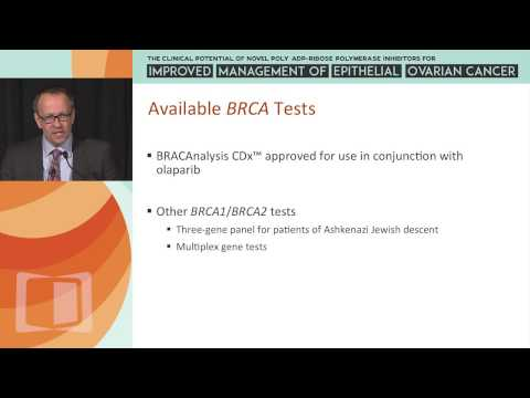 Testing for BRCA Germline Mutations in the Clinic and the Mechanism of Action of PARP Inhibitors