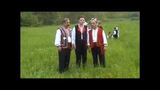 Glasoechko, male two-part singing in Dolni Polog