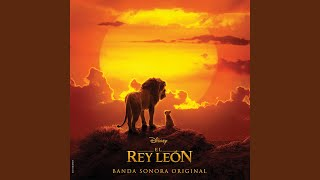 El León Rey Duerme Ya