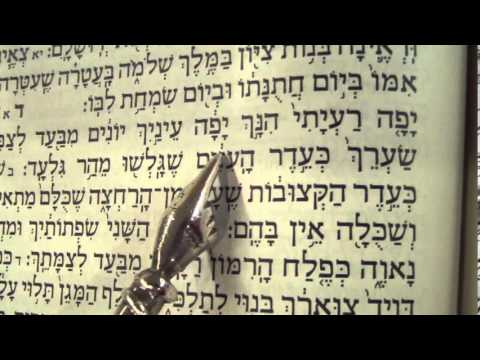 Song of Songs reading Hebrew Ashkenaz Rabbi Weisblum שיר השירים פסח נוסח אשכנז