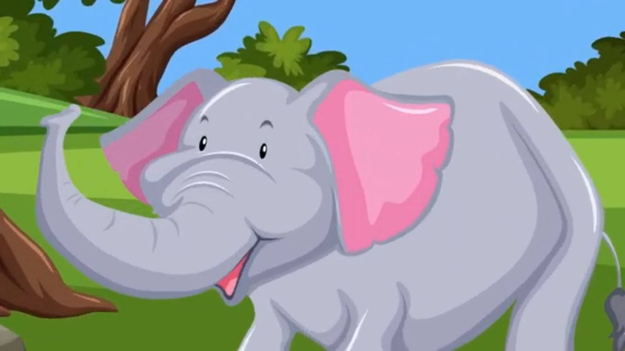 Let's Go To The Zoo! Animal Sounds SONG for Kids!