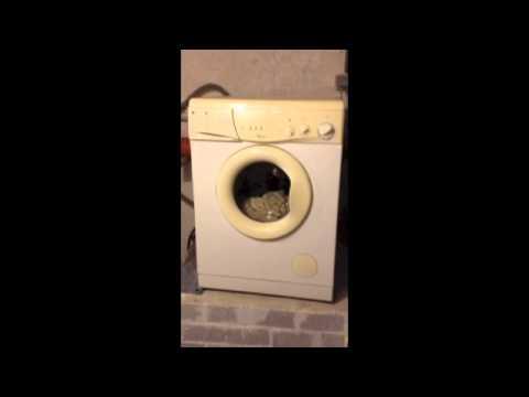 Bekend Wasmachine probleem centrifugeren - YouTube AH89