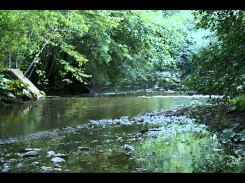 Pachelbel - Canon in D Major - Walter Rinaldi: Rinascita