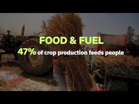 Food Sustainability Media Award 2018