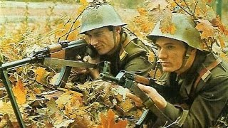 Infantry Weapons of Yugoslavia 1924 - 1999