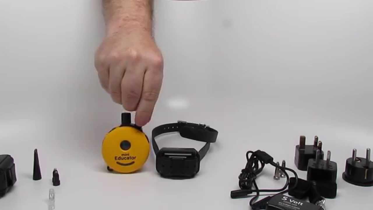 E Collar Technologies Mini Educator Et 300ts Dog Training