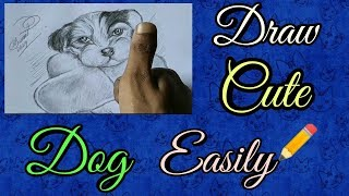 Drawing Cute Dog in pencil sketch