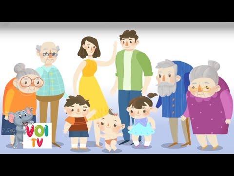 Voi TV - Dạy Bé Học Nói Thành Viên Trong Gia Đình   Học Tiếng Việt Qua Bài Hát #5