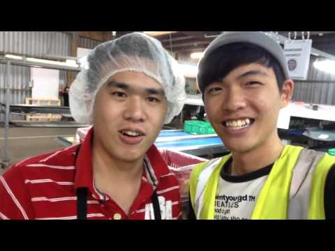 NZ Vlog #23 - Friends in KeriKeri 「紐西蘭打工假期」