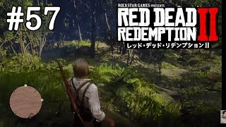 【RDR2】#57南の島は楽園じゃなさそう【Red Dead Redemption 2】