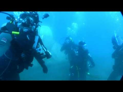Giant Fish Discvered In Lake Tahoe While Diving