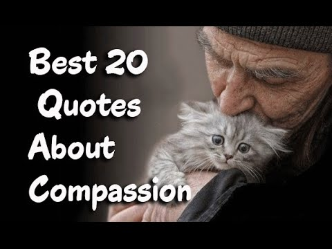 Best 20 Famous Quotes About Compassion    to Inspire Self compassion     Best 20 Famous Quotes About Compassion    to Inspire Self compassion    YouTube