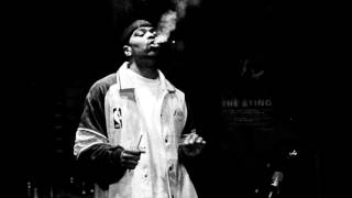 Wu-Tang Clan - Back in the Game (Phoniks Remix) INSTRUMENTAL