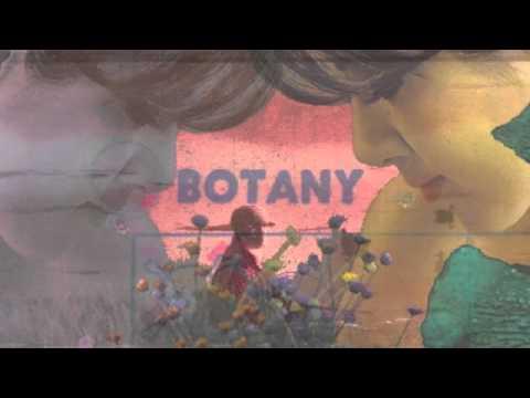 Botany - Agave