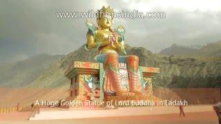 14 Beautiful Buddha Statues of South Asia