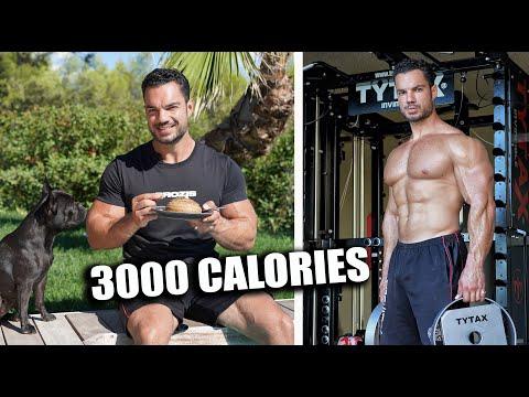 une-journÉe-dans-mon-assiette-a-3000-calories-recette-protÉinÉe-et-training-dos